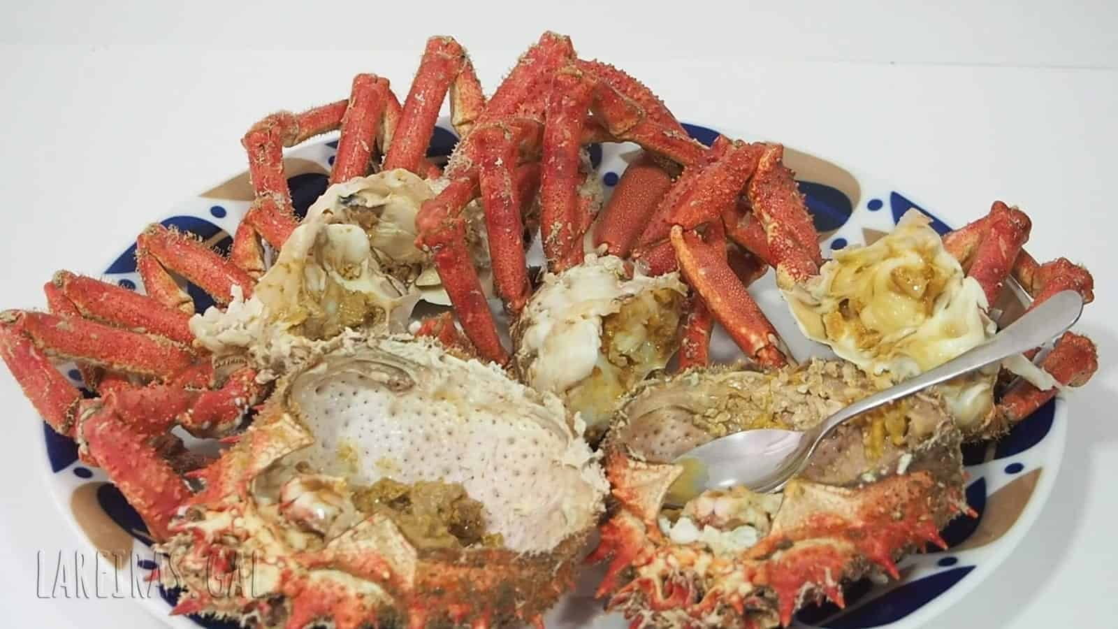 Boiled spider crab