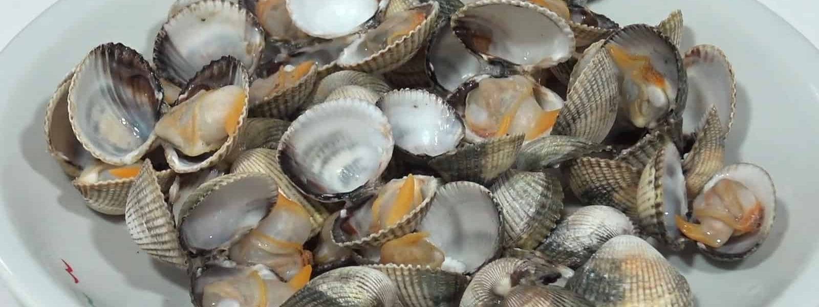 Steamed cockles (natural)